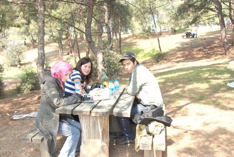 piknik11.jpg