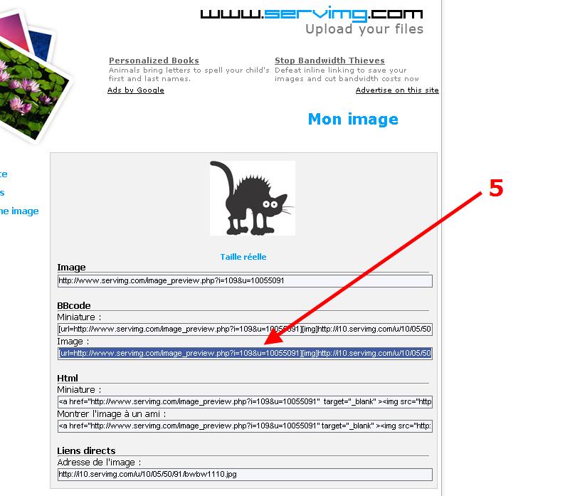 Comment inserer une image dans un post - MàJ Page 3 Ibelan12