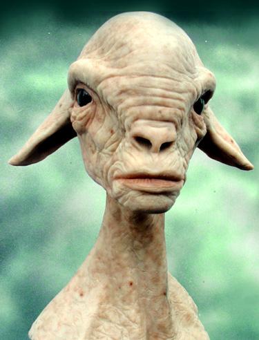 Bégé va etre rebatisé Sheepf10
