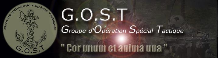 Groupe d'Opération Spécial Tactique