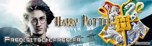 Créa pour Voldemort [TERMINE] Banhpf10