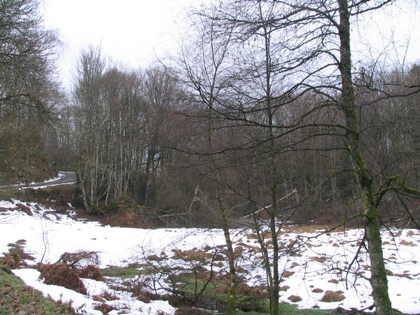 une balade dans les monts d'Ambazac Img_0466