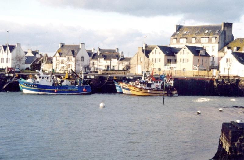 Le port de Lesconil Lescon10