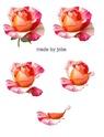 Planche de motifs a imprimer pour cartes 3D Photo_10