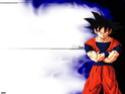 Dragon Ball Z 910