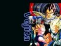 Dragon Ball Z Cartoo10