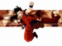 Dragon Ball Z Dbz2110