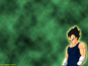 Dragon Ball Z Fonds311