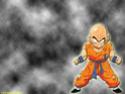 Dragon Ball Z Fonds510