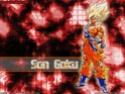 Dragon Ball Z Photo_13