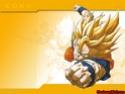 Dragon Ball Z Photo_21