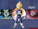 Dragon Ball Z Photo_29