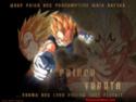 Dragon Ball Z Photo_31
