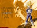 Dragon Ball Z Photo_32