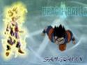 Dragon Ball Z Sangoh11