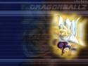 Dragon Ball Z Sangoh13