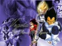 Dragon Ball Z Vegeta12