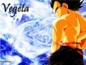 Dragon Ball Z Vemget10