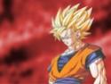 Dragon Ball Z Wall4610