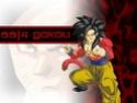 Dragon Ball Z Wall6210