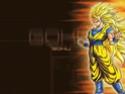 Dragon Ball Z Wall8710