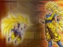 Dragon Ball Z Wall9210