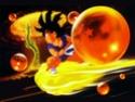 Dragon Ball Z Wall9310