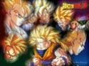 Dragon Ball Z Wallpa16