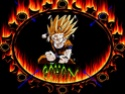 Dragon Ball Z Wallpa19