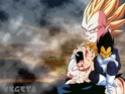 Dragon Ball Z Wamll310