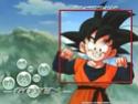 Dragon Ball Dragon14