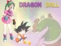 Dragon Ball Dragon17