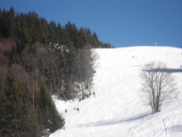 Belle d'arbois; Megève Mont d'arbois Dsc00627