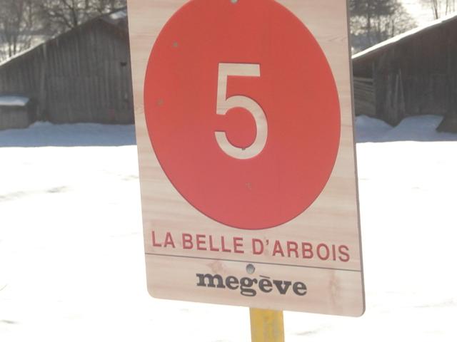 Belle d'arbois; Megève Mont d'arbois Dsc00628