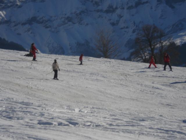 Belle d'arbois; Megève Mont d'arbois Dsc00631