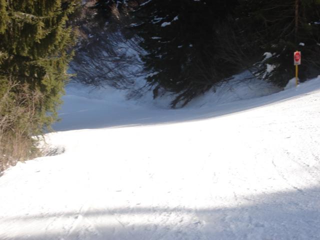 Schuss; Megève Mont d'arbois Dsc00640