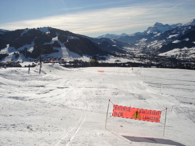 Schuss; Megève Mont d'arbois Dsc00643