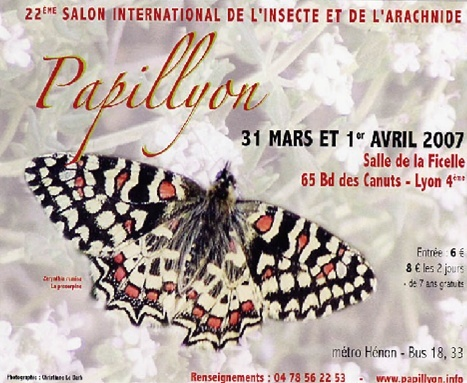 Papillyon ! Une expo. a ne pas rater ... Papily10