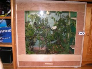 terrarium pour phasme trouvez le meilleur prix sur voir. Black Bedroom Furniture Sets. Home Design Ideas