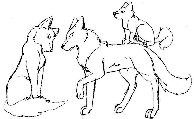 Loup dessin facile vw88 montrealeast - Dessin loup facile ...
