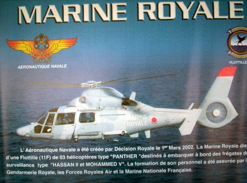 Photos Helicopteres de la MR Flotti10