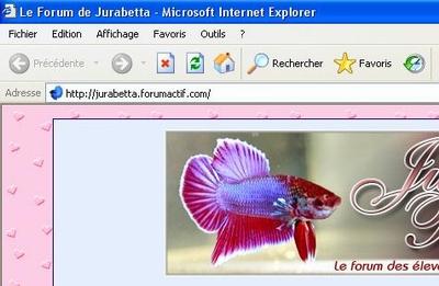 Mettre une image de betta dans la barre de lien/favicon Favico10