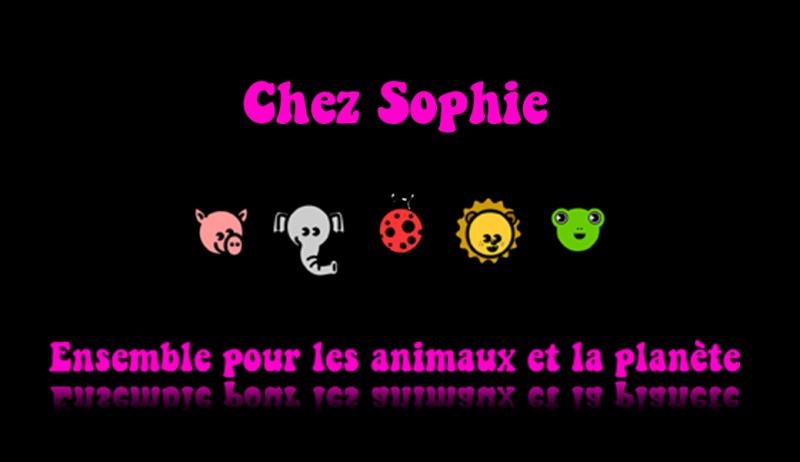 Chez Sophie - Portail Bannie17