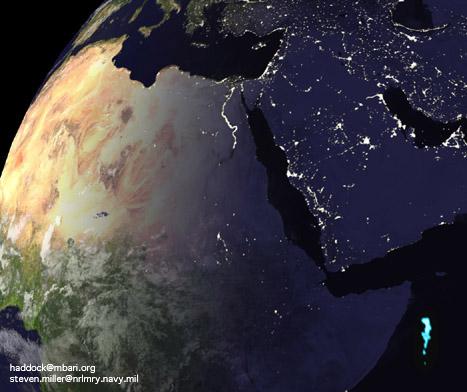 Bioluminescence Milkys11