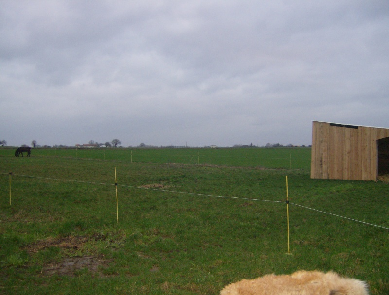 2007-023.jpg