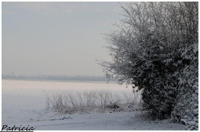 dsc_0118 dans paysages