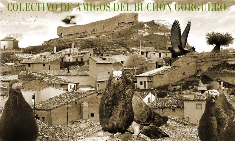 Amigos del Buchon Gorguero