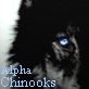 Alpha Chinook (Admin en chef)