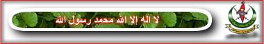 https://i10.servimg.com/u/f10/13/60/02/95/islami11.png