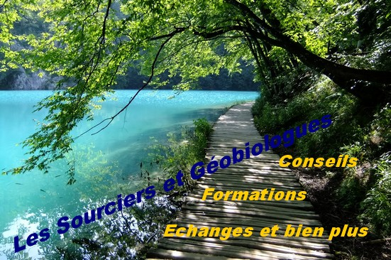 Sourciers et géobiologues